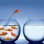 Stress e introversione IM3 www.psicologo-a-torino.it